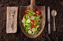 Locally Grown Garden Salad On ...