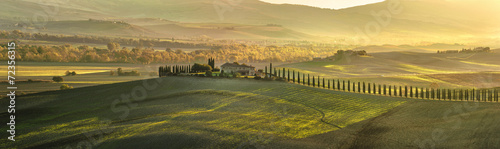 Foto op Plexiglas Toscane Panoramic view of Tuscan house with cypress trees along the road