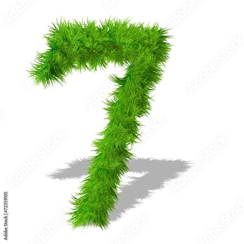 Fotografie, Obraz  Conceptual green grass 3D font isoalted