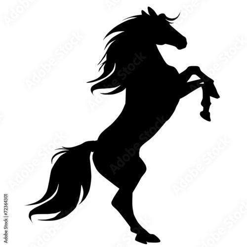 Juliste  black horse silhouette 16