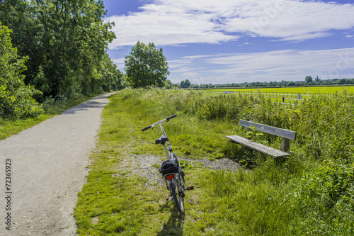 Wall Murals Cycling cyclists