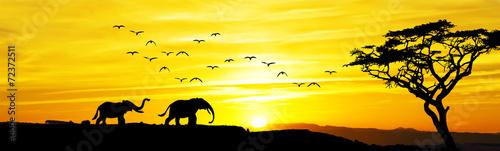 Poster Melon paisaje panoramico de una amancer africano