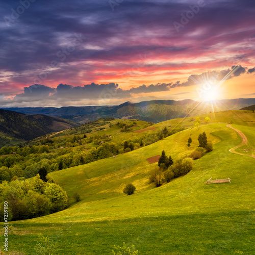 Canvas Prints Honey fence on hillside meadow at sunset