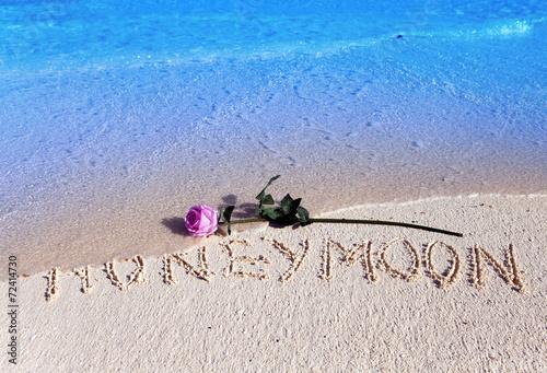 Fotografia  Napis Miesiąc miodowy i kwitnąca róża