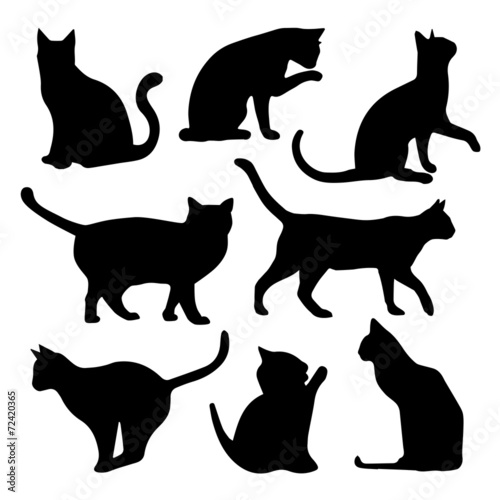 Fotografie, Obraz Black Cats Silhouettes