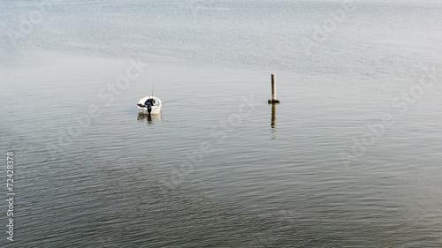 Fotografie, Obraz  Pesca sul lago con barca