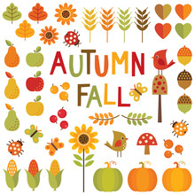 Set Of Autumn And Fall Design Elements