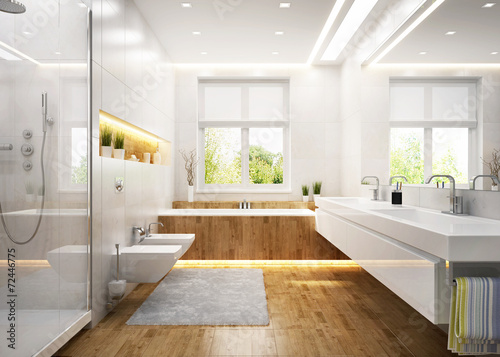 Fotografia, Obraz  Modern white bathroom