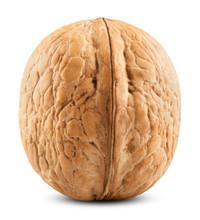 Single Walnut