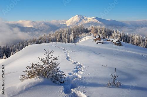 Keuken foto achterwand Bossen Winter in the mountains