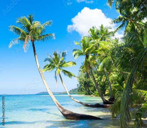 Deurstickers Strand Green Getaway Idyllic Island