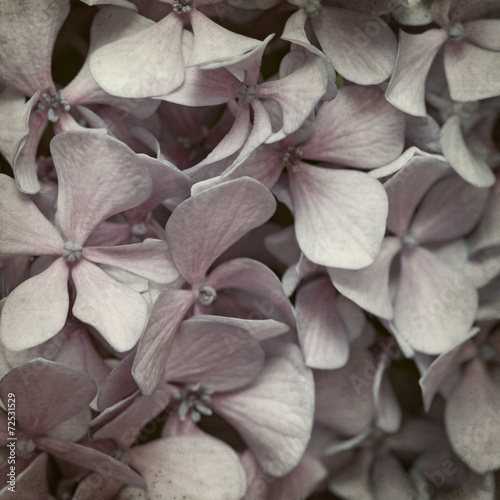 Fototapety, obrazy: textured old paper background