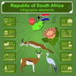 South Africa infographics, statistical data, sights