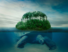 Giant Turtle Carrying Island The Earth On Back Swimming In Ocean
