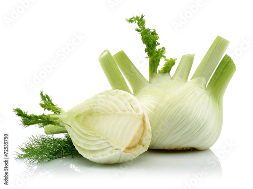 Fresh Fennel and Half Fennel
