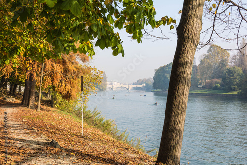 Foto op Canvas Bomen Along the Po River in Autumn, Turin