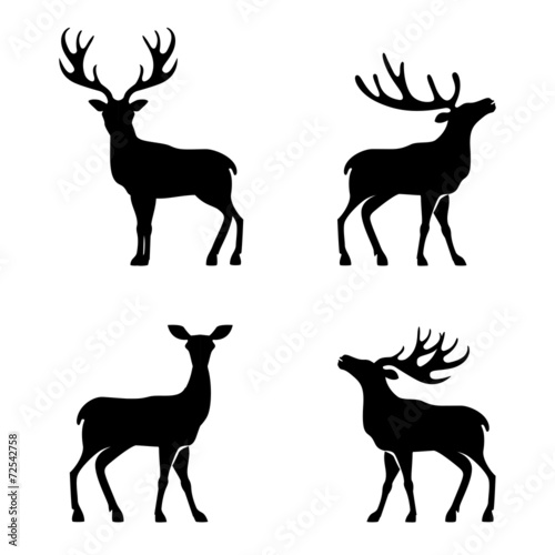 Fotografie, Obraz  Deer collection - vector silhouette