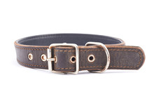 Old Leather Dog-collar Isolated