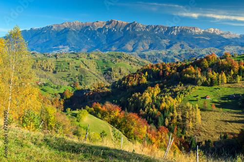 Keuken foto achterwand Verenigde Staten Green fields and colorful autumn forest,Magura village,Romania