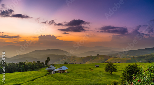 Twilight at rice terrace in panoramic view
