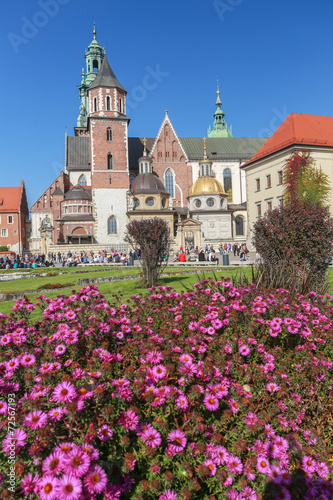 Cracow | Wawel Castle | cathedral #72567193
