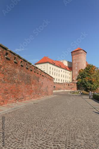 Cracow |  Wawel Castle #72567322