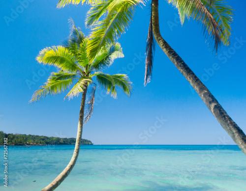 Poster Tropical beach Idyllic Island Exotic Paradise