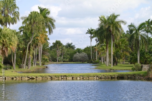 Photo sur Aluminium Caraibes Fairchild tropical gardens - landscape