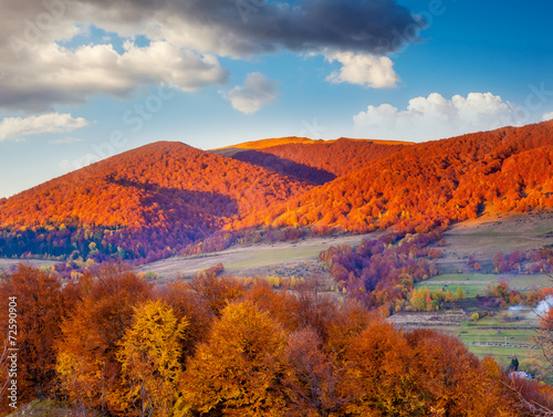 Tuinposter Purper colored autumn mountains