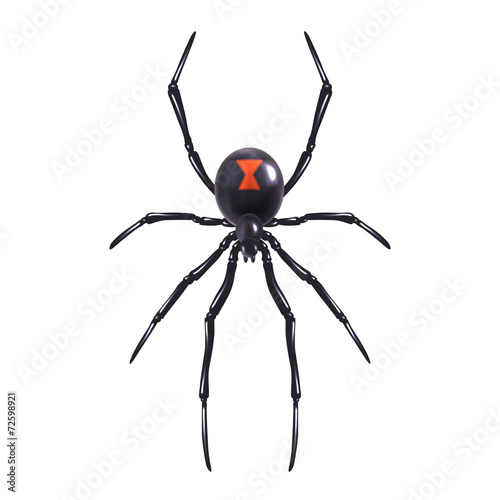 Realistic spider isolated Wallpaper Mural