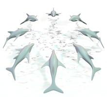 Dolfijnen Springen In Cirkel U...