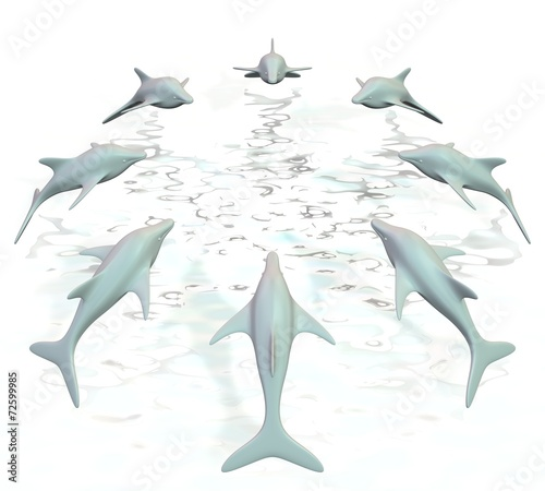 Dolfijnen springen in cirkel uit het water Wallpaper Mural