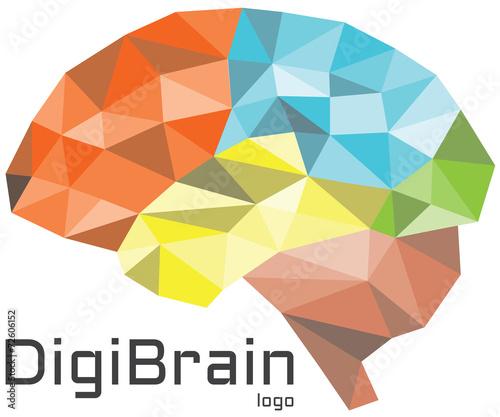 Fotografie, Obraz  DigiBrain logo