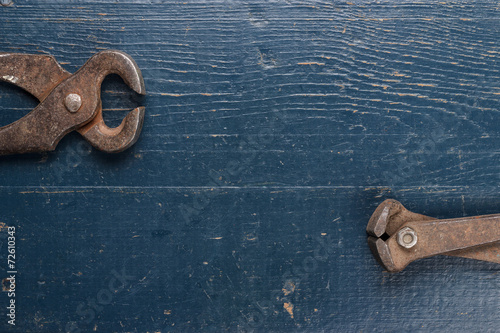 old rusty tongs on blue table Poster