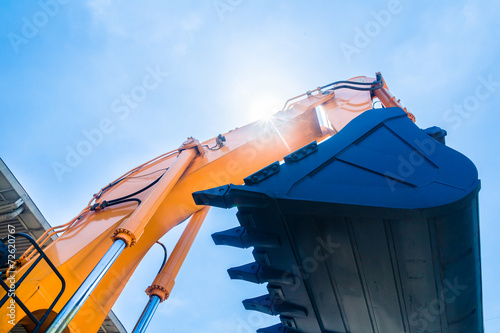 Poster Palm tree Shovel excavator on rental company