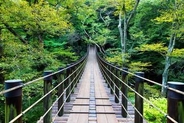 Fototapeta Shiomidaki Suspension Bridge