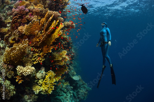 Photo Stands Diving Freediver