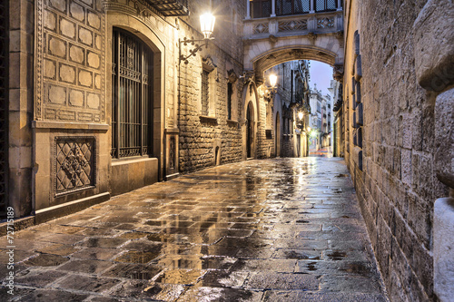 Photo Stands Barcelona Narrow street in gothic quarter, Barcelona