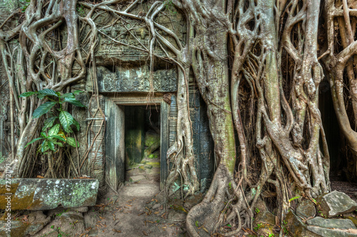 Tuinposter Rudnes Ancient stone door and tree roots, Ta Prohm temple, Angkor