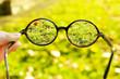 Leinwandbild Motiv Vision concept. Glasses in hand on green grass background