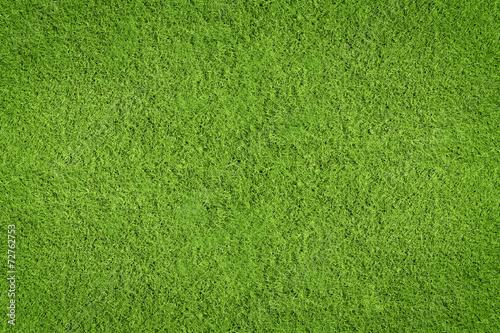 Deurstickers Gras Rasen