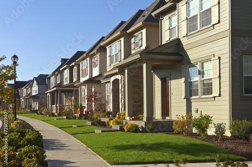Fotografie, Obraz  Row of new homes in Willsonville Oregon.