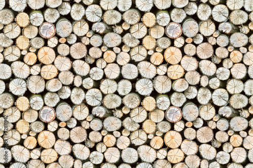 Photo Stands Firewood texture firewood free-standing stack, seamless pattern