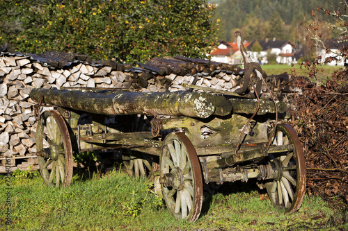 Fototapety, obrazy: Old pile of wood in the countryside
