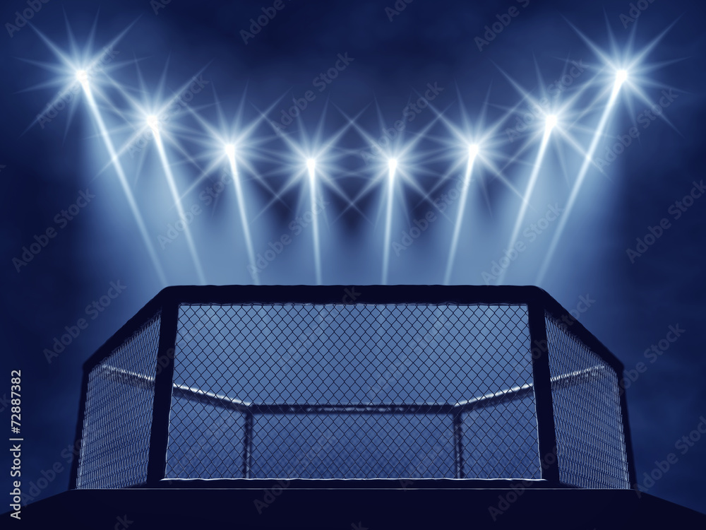 MMA cage and floodlights , MMA arena