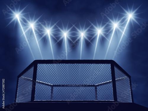 fototapeta na szkło Klatka MMA i reflektory, MMA areny