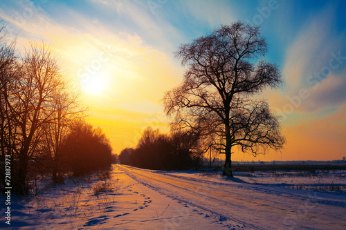 Garden Poster Brown Snowy rural road at sunset