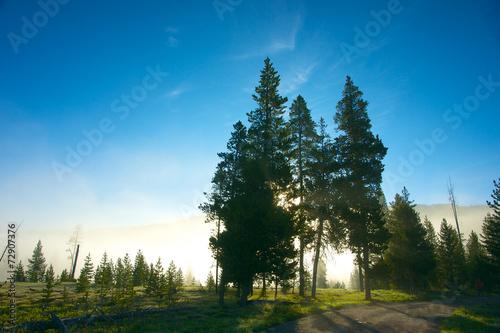 Fotografía  Sun Peaks Through Fog