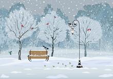Birds In The Winter Snowy Park