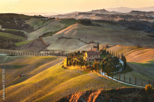 Canvas Prints Honey Cypress Tuscany in the beautiful landscapes of the setting sun.